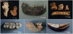 rivirasika-medagedara-kelum-manamendra-archchi-pgiar-zooarchaeology-sri-lanka-archaeology.lk3_-300x139